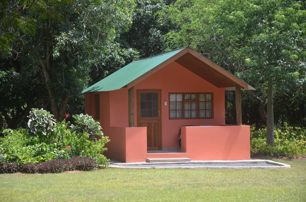 Bushbaby Lodge and Camping room 1