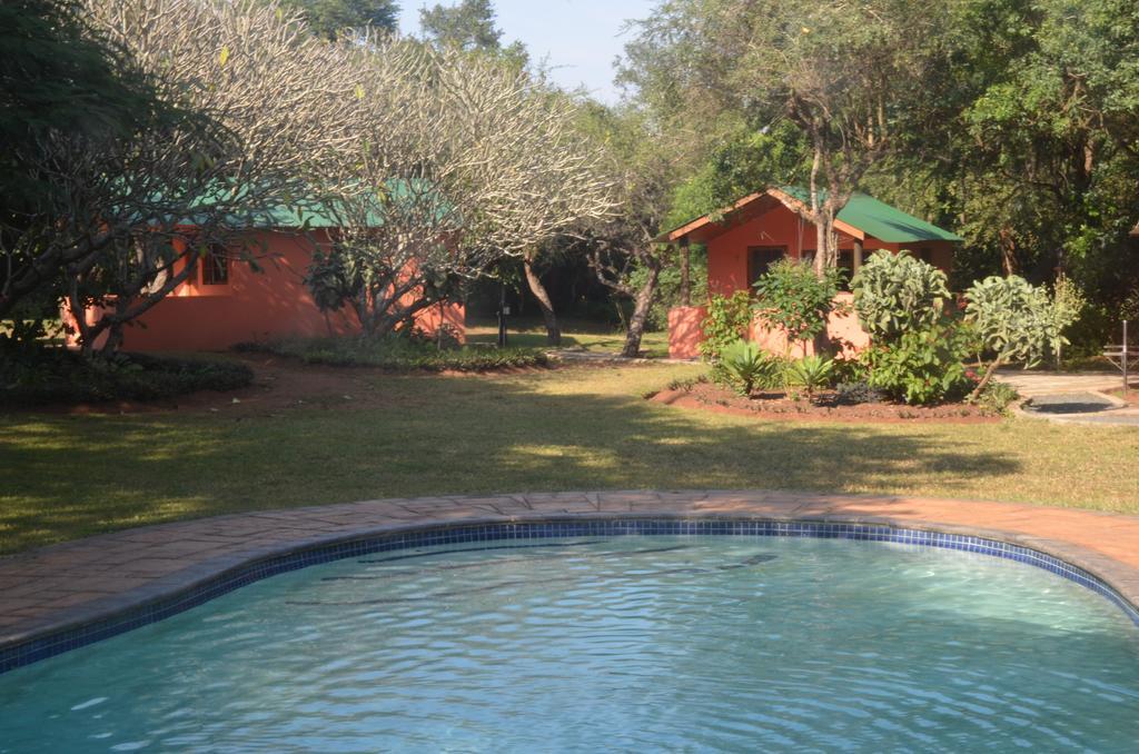 Bushbaby Lodge and Camping room 2