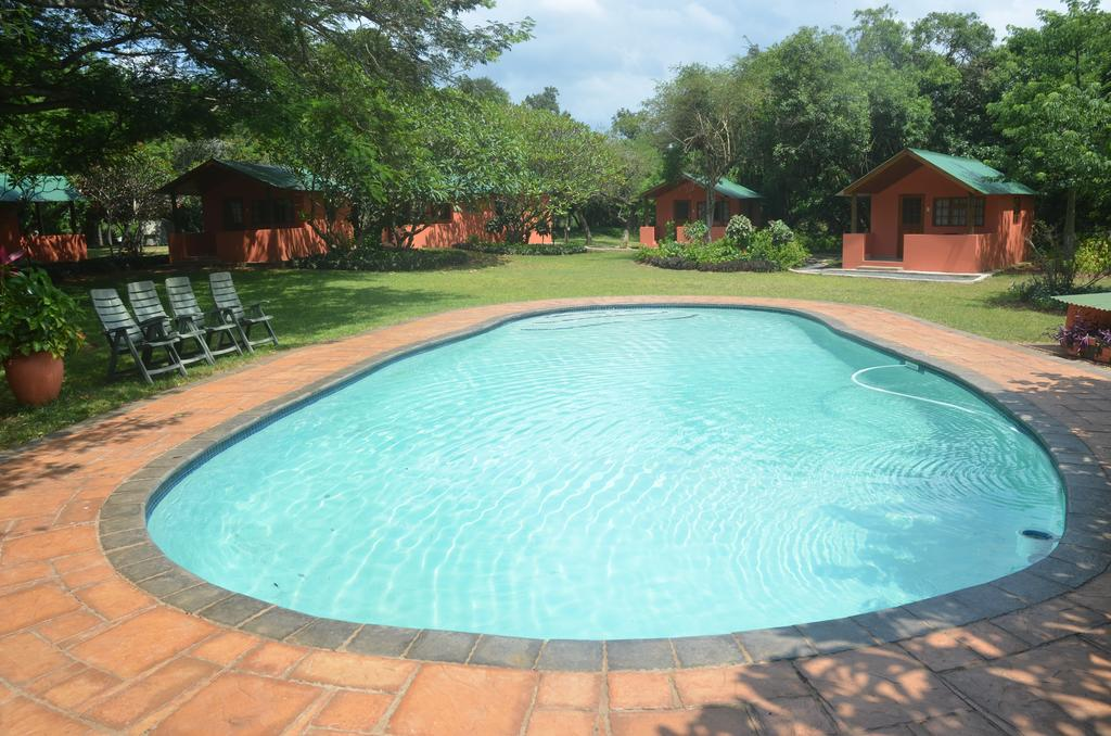 Bushbaby Lodge and Camping room 4