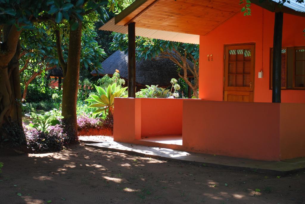 Bushbaby Lodge and Camping room 6